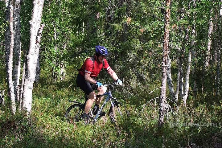 Mountain bike tour in Russian Lapland Kola Peninsula